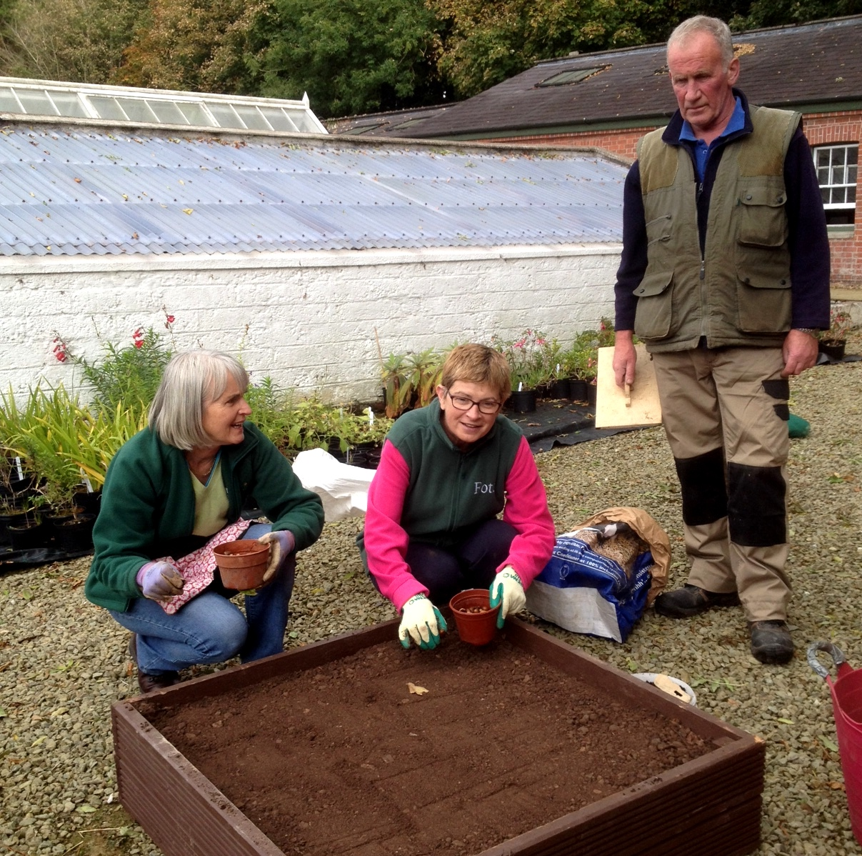 Ann, Gabriella, Bernard. Setting acorns in the seed box.