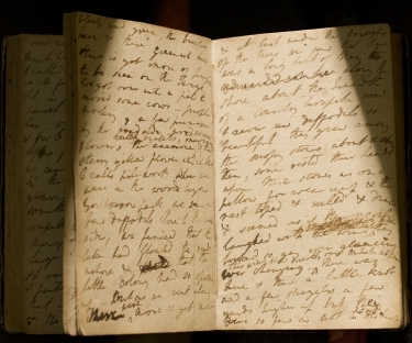 Dorothea's Journal