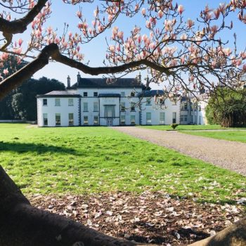 Fota Arboretum and Gardens Re-Opening Monday 18th May 2020
